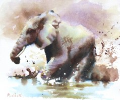 Mudbath II  12 x 13 inches watercolour