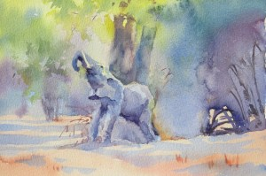 Out on a limb  7 x 11 inches watercolour