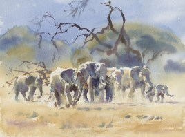 The Silent Herd   12 x 16 inches watercolour