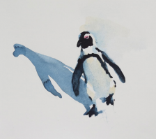 penguin with attitude 8 x8 inches watercolour