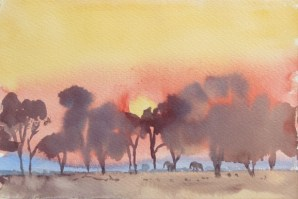 sunset South Luangwa 7x11 inches watercolour