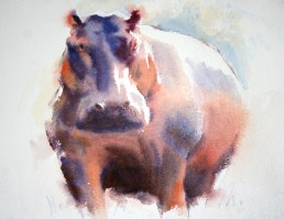 Big Hippo watercolour 22 x 28