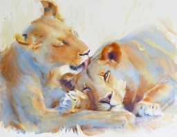 Licky Lions 22 x 28 inches  watercolour