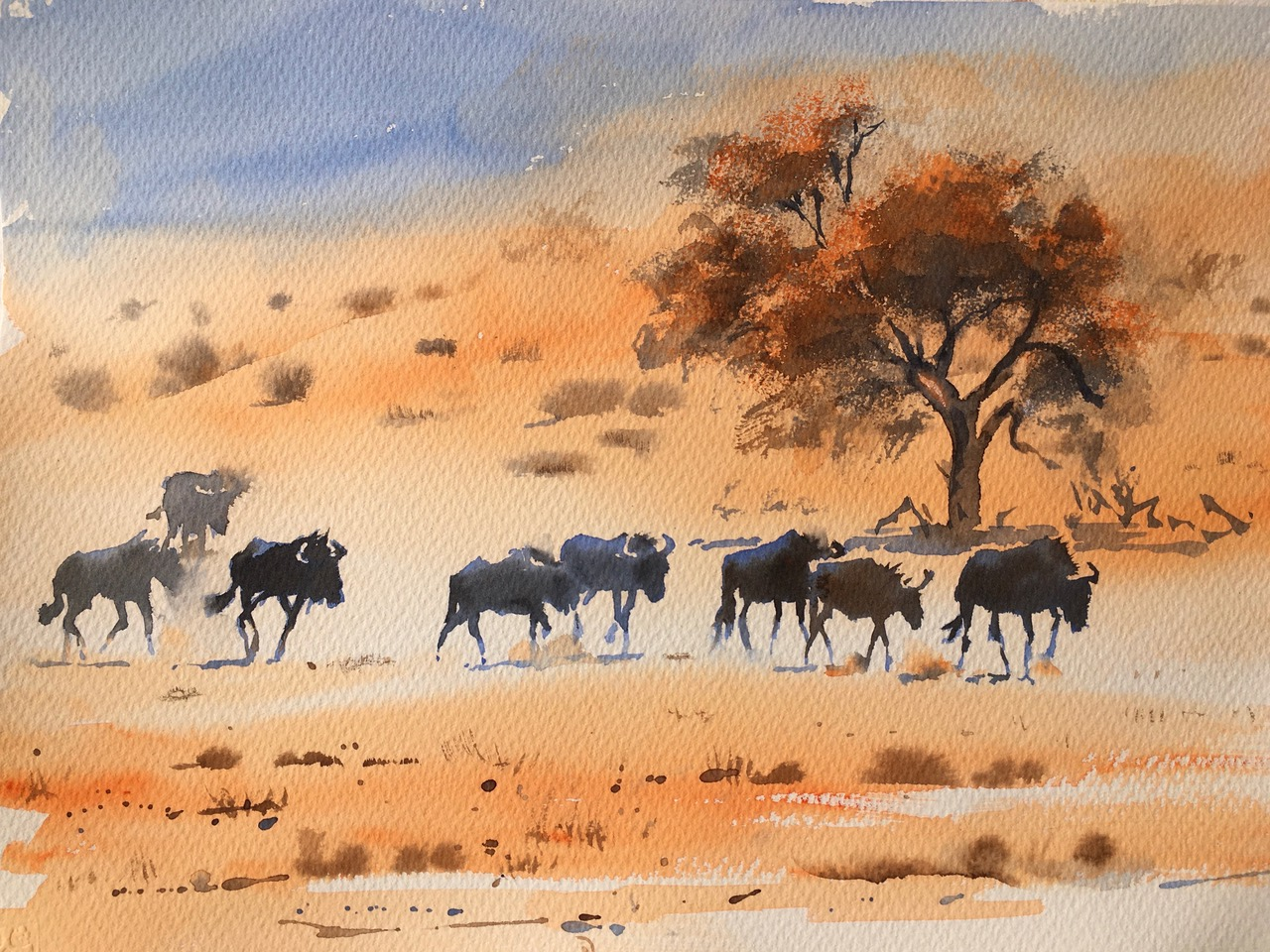 Lines in the sand. Kalahari.   Watercolour 11 x 15 inches