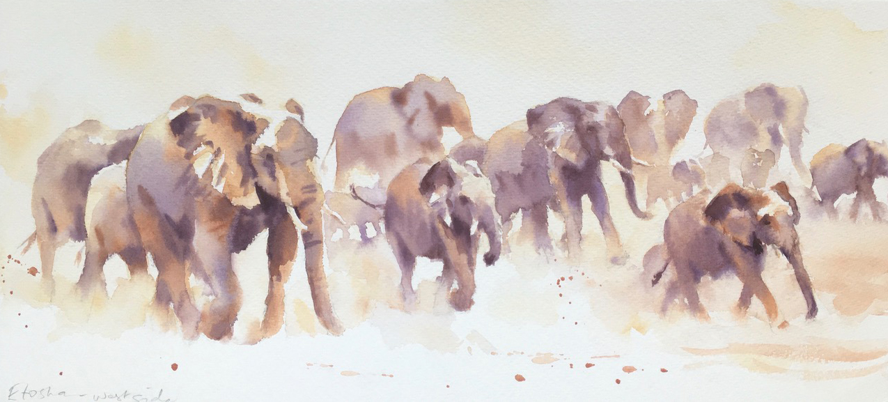 Soundless in the rising dust.   Watercolour c12 x 22 inches