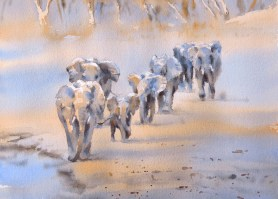 Stream of the South Luangwa  11 x 15 inches watercolour
