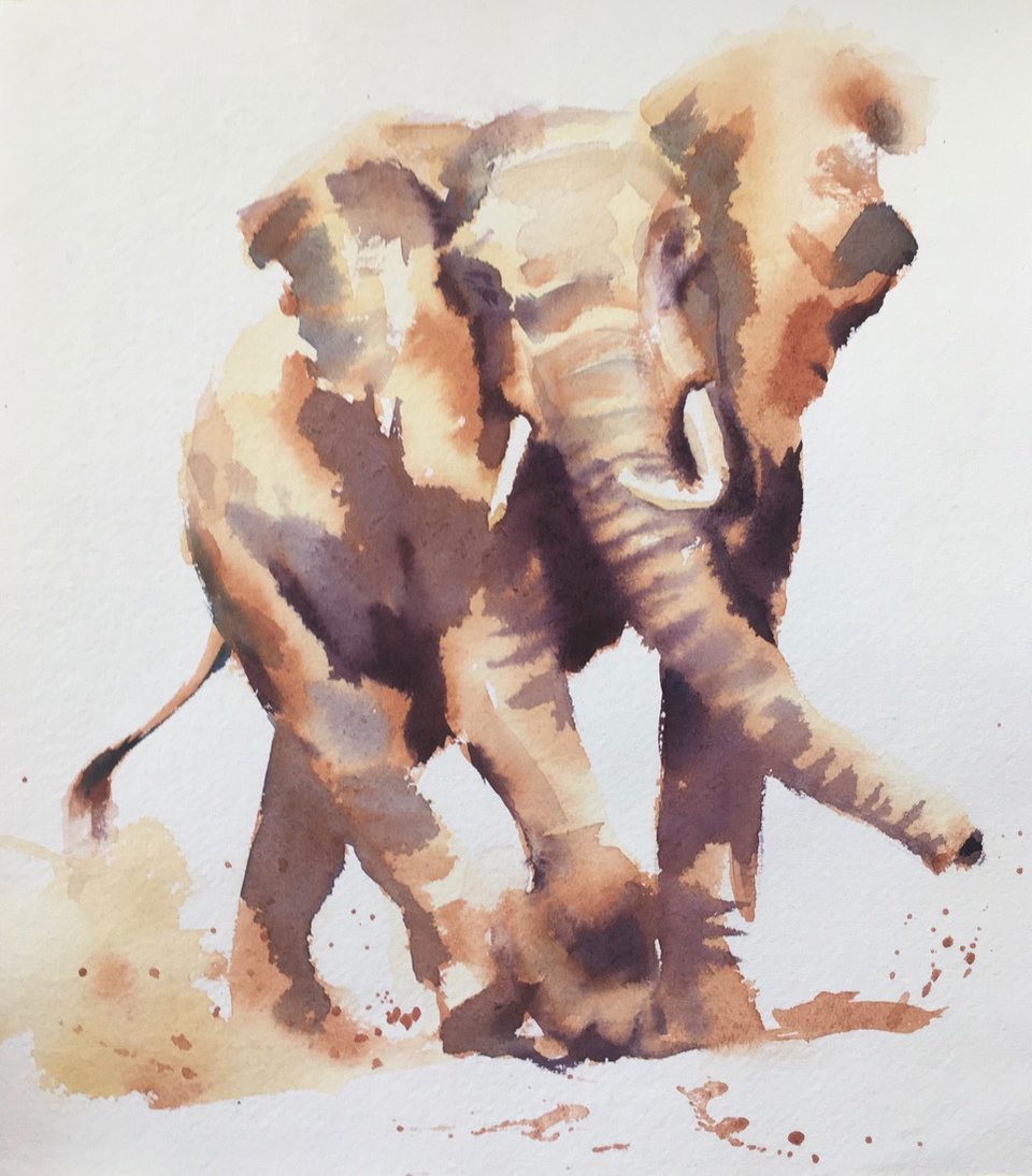 Surprise Encounter. Watercolour  c 13 x 12 inches