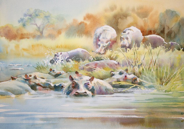 The Hippos keep coming 12 x 16 inches watercolour