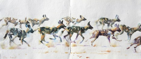 The Hunt  12 x 27 inches watercolour