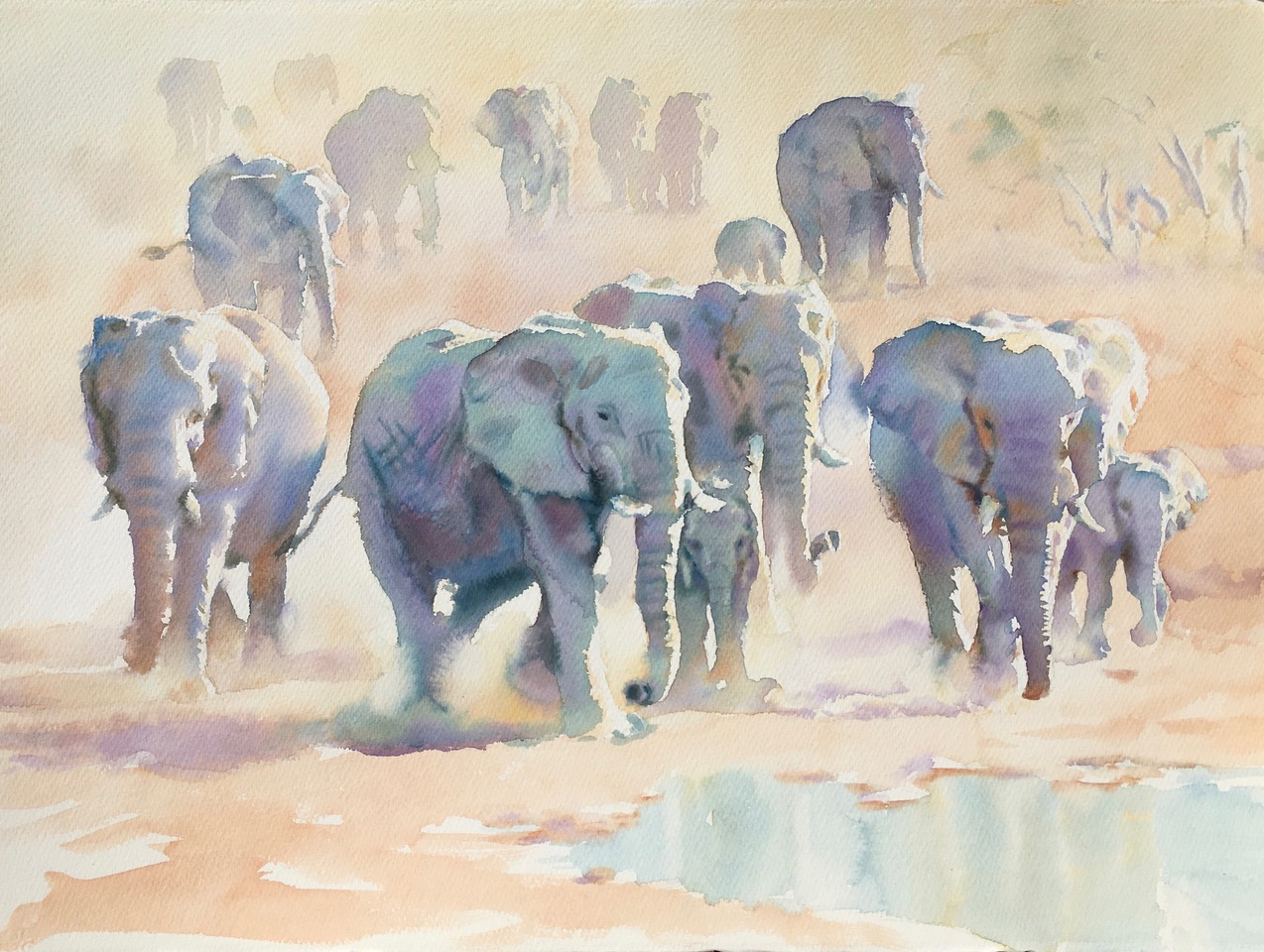 Veil of dust, Etosha 22 x 30 in 56 x 76 cm watercolour