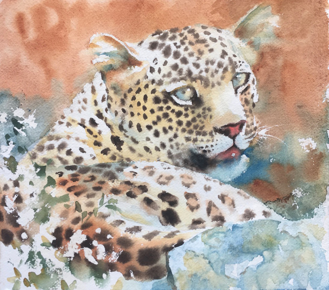 Wild gaze. Watercolour on Khadi paper 12 x 13 inches